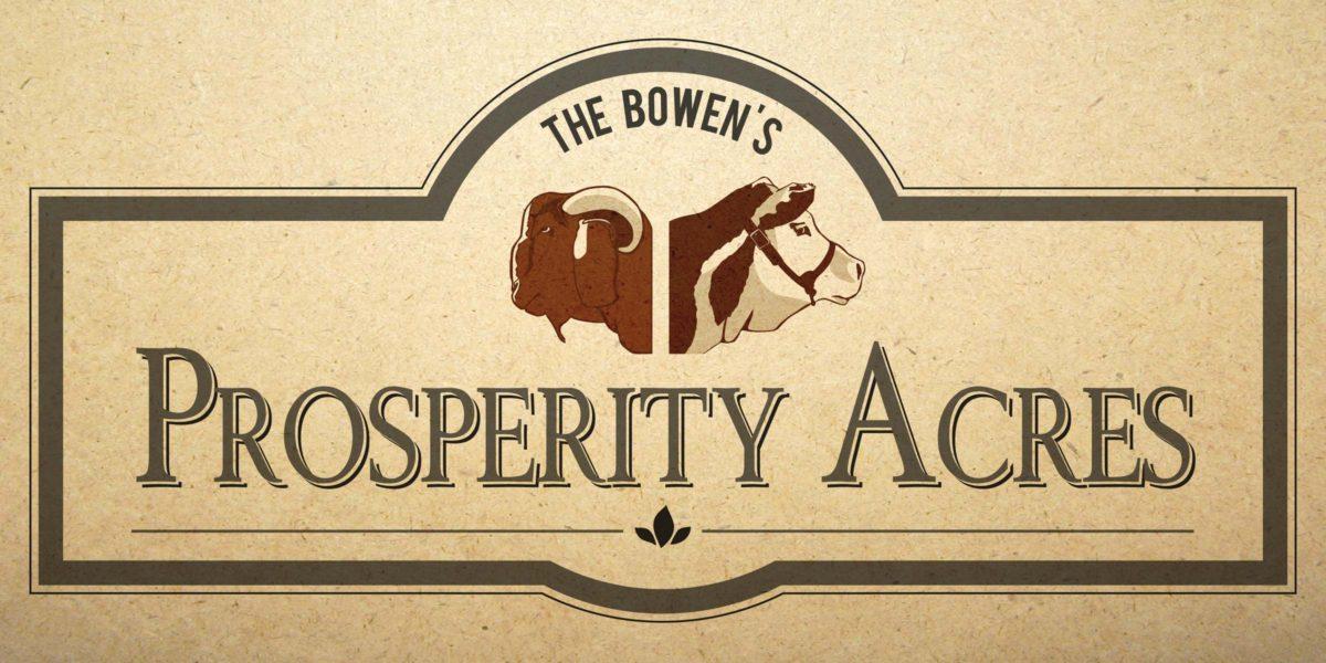 DCP Design - Prosperity Acres Branding